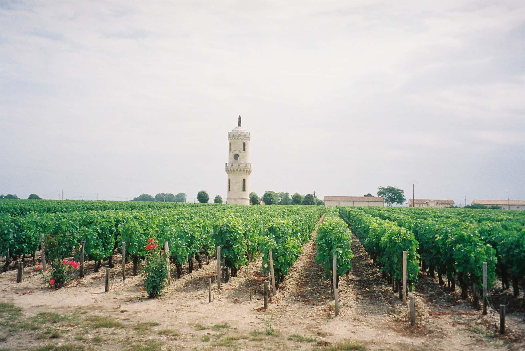 chateau-latour-pauillac