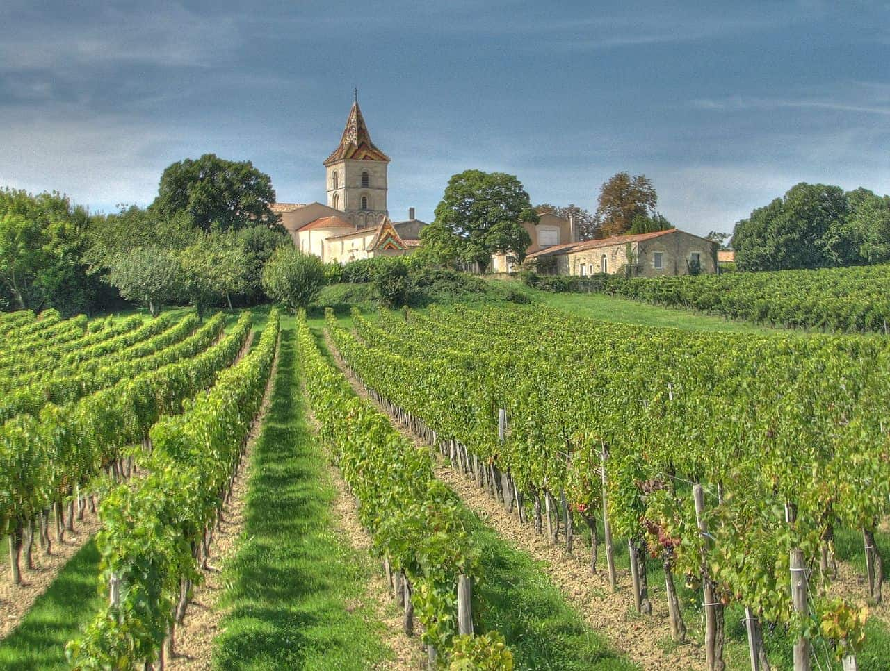 Change is in the air in bordeaux 2015 bordeaux wine trends offer lessons for collectors - The splendid transformation of a vineyard in burgundy ...