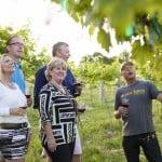 VIP Wine Tour
