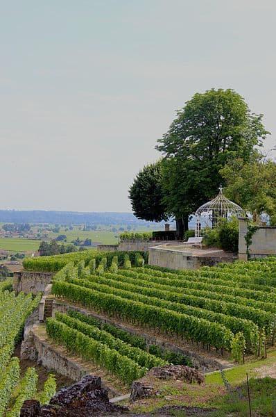 Best Winemakers