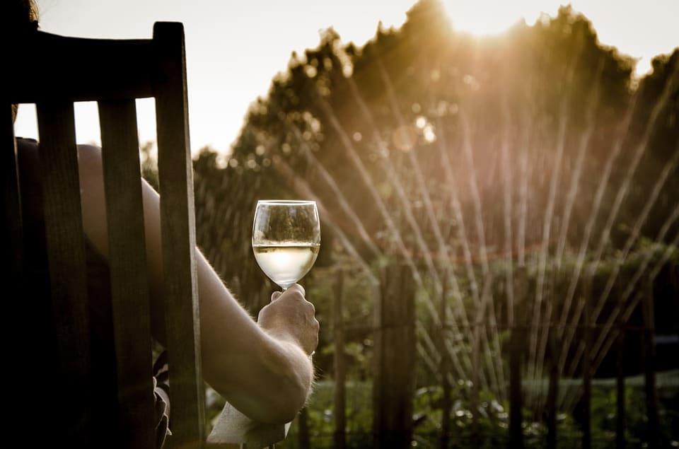 Essential Summer Wine