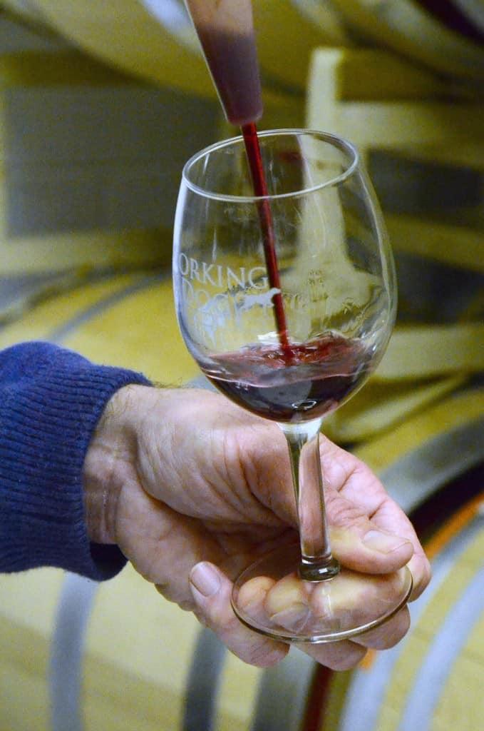 Seasonal Fall Wines