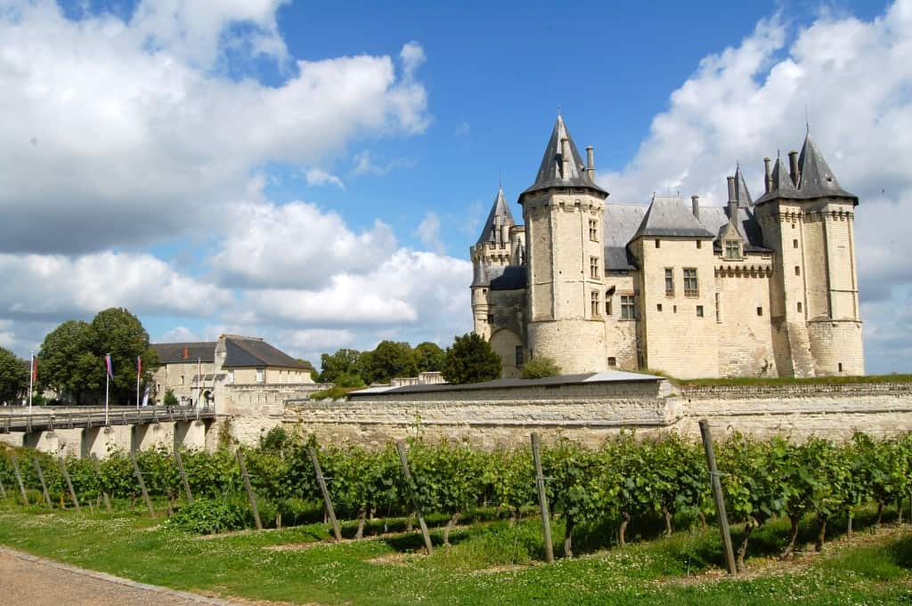 2005 Clos Rougeard Loire Wine