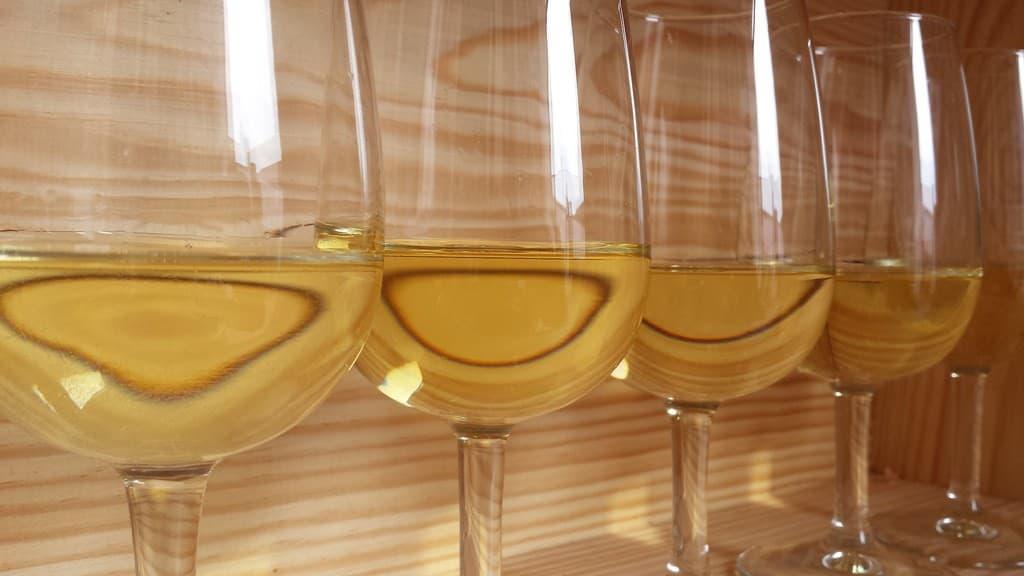 white wine tasting notes