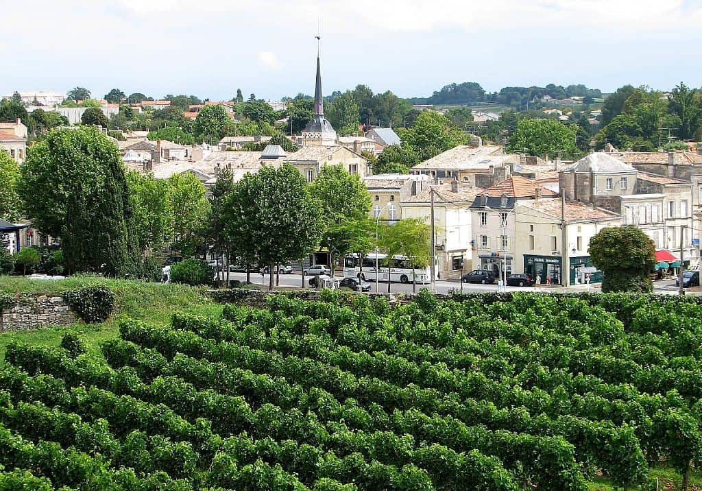 Bordeaux 2016 vintage report