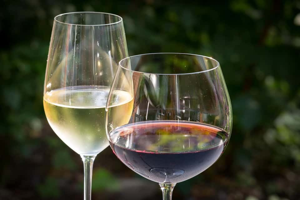 Shape of the wine glass affect the taste of the wine
