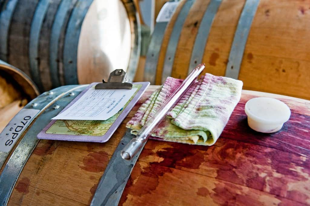Tasting Wine from the Barrel