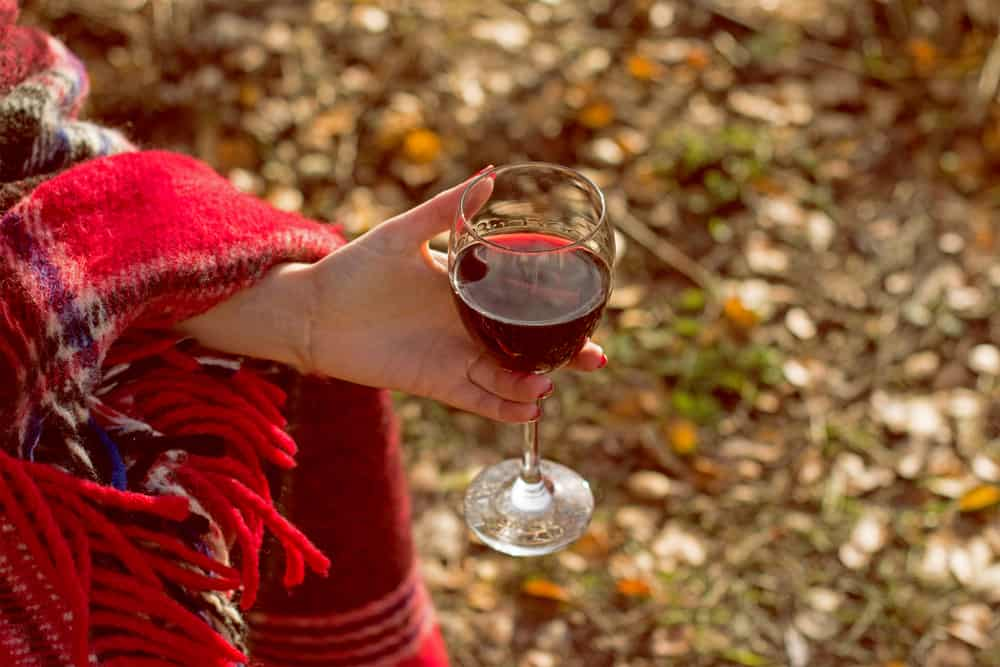 Light red wines for fall are the perfect choice.