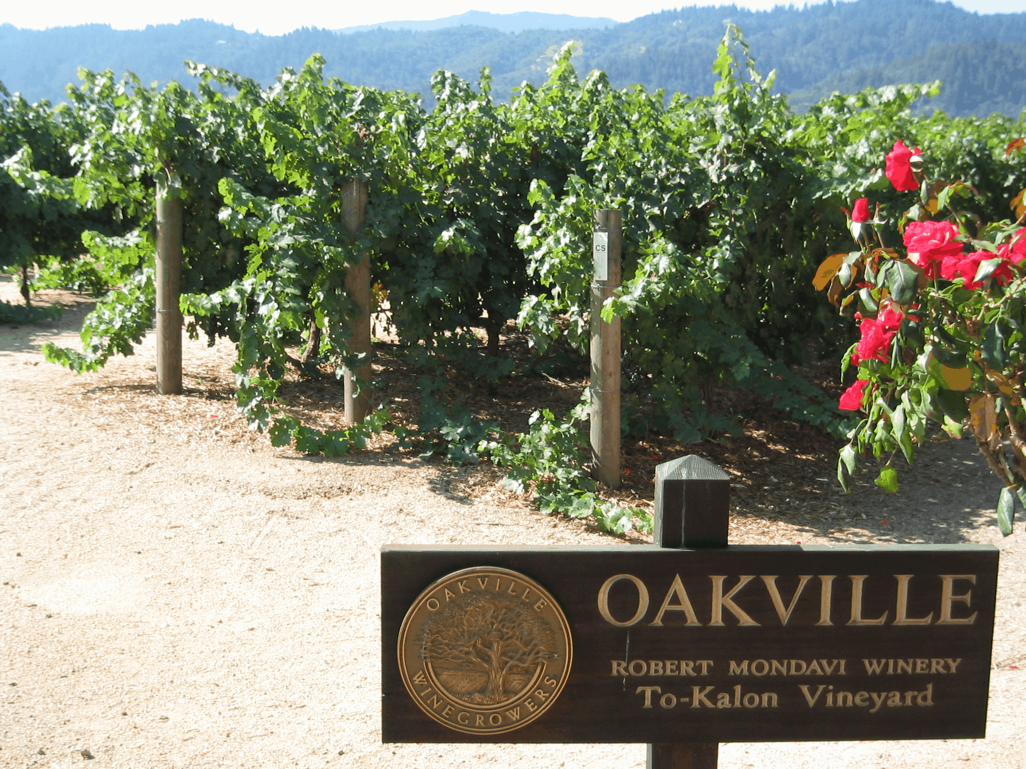 The Oakville AVA contains many illustrious vineyards.